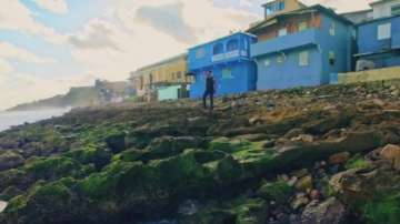 Островът, на който e заснета песента Деспасито, тъне в разруха