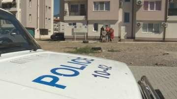 Бездомно куче нахапа дете в Дупница