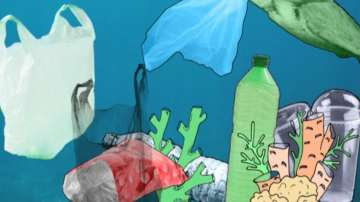 ДРУГИТЕ новини: Без пластмасови чинийки и бъркалки