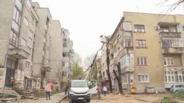 Недоволство срещу изсичането на дървета в центъра на Добрич