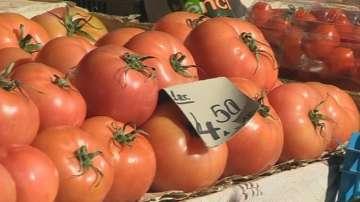 Българските оранжерийни домати с близо 70% по-скъпи от вносните