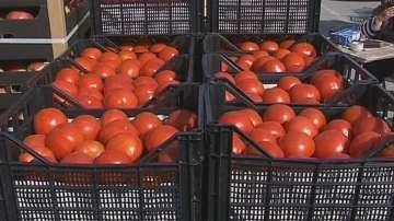 По-скъпи домати за великденската трапеза