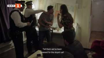 ДРУГИТЕ новини: Котка в стената с ново признание
