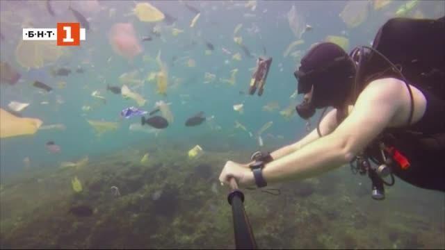 Снимка: ДРУГИТЕ новини: За чисто море