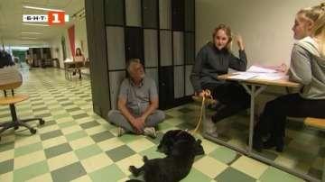 ДРУГИТЕ новини: Куче психотерапевт