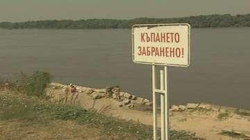 Русенци не спазват забраната за къпане в Дунав
