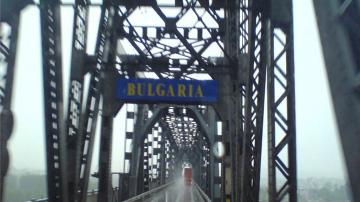 Иззеха над 200 килограма месо заради опасност от африканска чума на Дунав мост