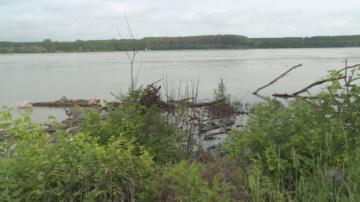 Слаб улов заради високите води и замърсяването на Дунав