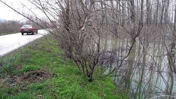 Дунав при Видин достигна 766 см