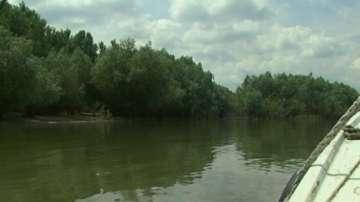 Доброволци ще почистват дунавските острови в Русе