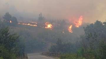 АПИ внася сигнал в прокуратурата във връзка с пожара край Дупница
