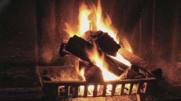Вече всички домакинства в Пернишко имат дърва