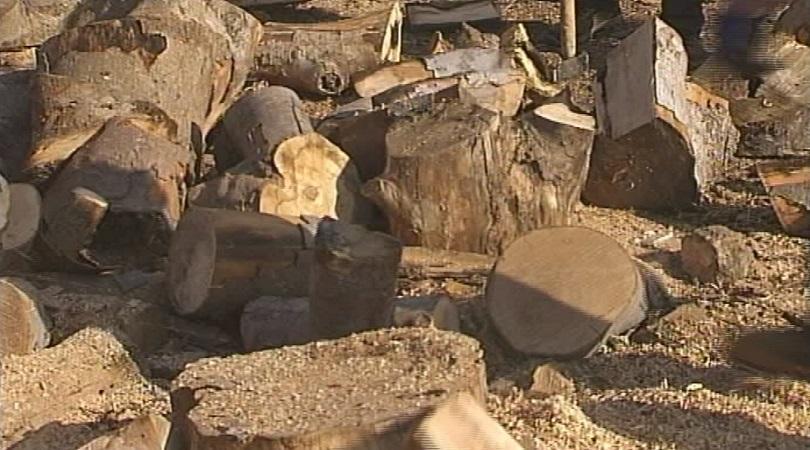 Цената на дървата за огрев в Благоевград скочи с 18