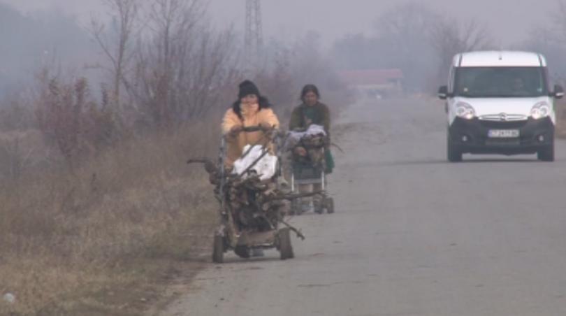 Десетки кубици незаконна дървесина бяха открити в старозагорското село Хан