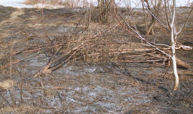 Отново зачестиха случаите на палене на сухи треви и боклуци