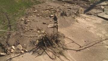 Стихия в община Две могили: Разрушени пътища, отнесени покриви и паднали дървета