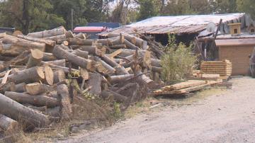 Купуваме дърва и въглища на същите цени, както миналата година