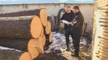 Едва 40% от обектите работят по новата система за следене на пътя на дървесината