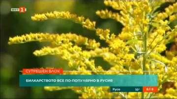 Билкарството става все по-популярно в Русия