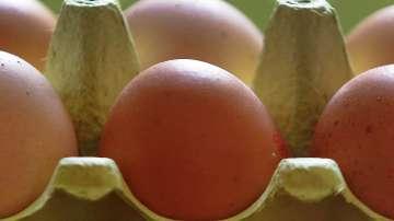 Скандалът със замърсените с инсектицид яйца в Европа се разраства