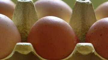 Заразени с фипронил яйца са открити в 15 страни от ЕС, Швейцария и Хонконг