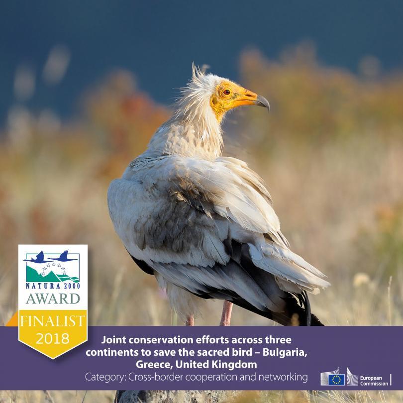 български проект спечели престижната награда натура 2000