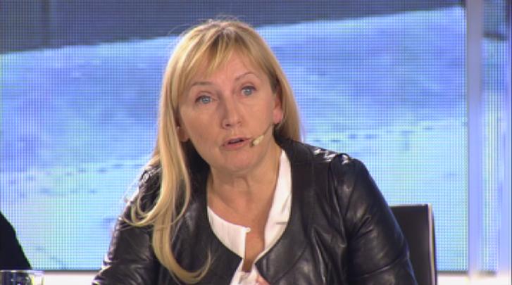 Елена Йончева ще сезира прокуратурата за изграждането на оградата по границата