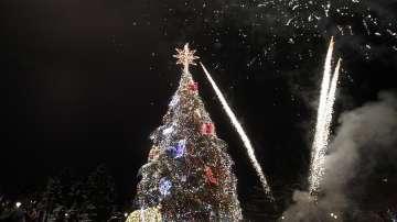 Грейнаха светлините на столичната елха