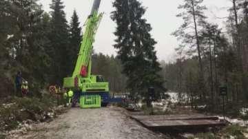 Норвегия подари на Великобритания коледно дърво