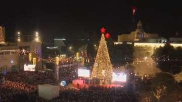 Коледната елха във Витлеем грейна
