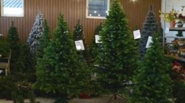 3D елхи са хит в украсата за Коледа тази година