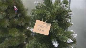 В Благоевград масово търсят изкуствени елхи за Коледа