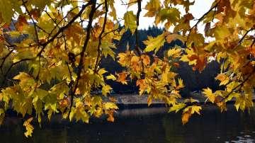 Времето през седмицата: Лятото отстъпва на есента за няколко дни