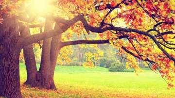 Октомври по-студен от очакваното