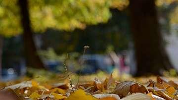 Какво време ни очаква с настъпването на есента?