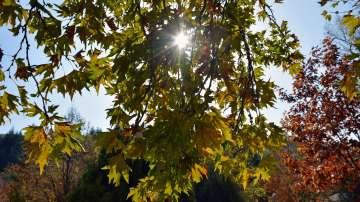 След кратко застудяване: много слънце и топло време в края на седмицата