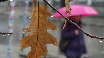 Температурите падат с над 10 градуса в петък, идват валежи и силен вятър