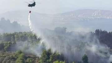 Горският пожар на гръцкия остров Евбея е под контрол