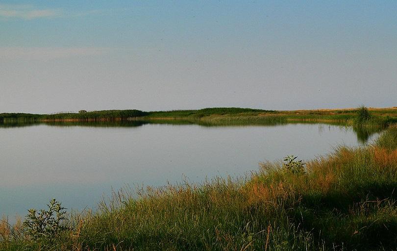 Снимка: Пожар в защитената местност Дуранкулашко езеро