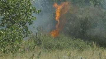 50 декара сухи треви и храсти изгоряха в Благоевград