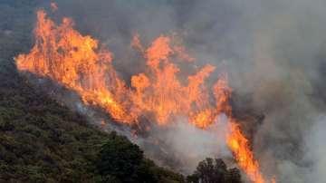 20 000 души са евакуирани заради пожарите в Калифорния