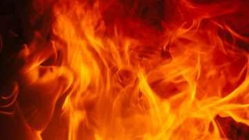 Горски пожар в Анталия се разраства от силния вятър и заплашва местни къщи