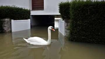 Забавления по време на наводненията във Франция (ВИДЕО)