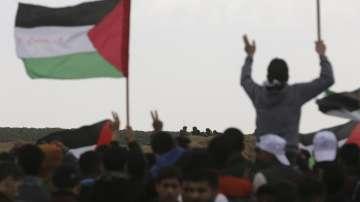 Най-малко седем палестинци са убити, а над 350 ранени в Ивицата Газа