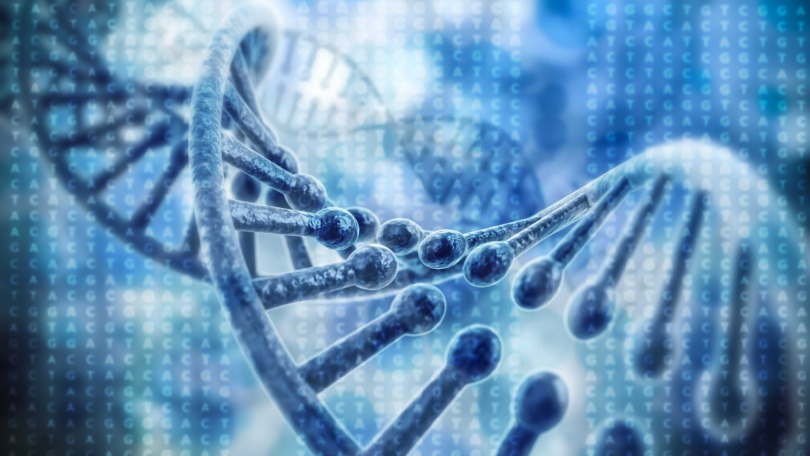 Български учени успяха да разгадаят деликатните молекулни механизми в клетката,