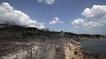 Пепелища след огъня: Продължава издирването на оцелели хора край Атина