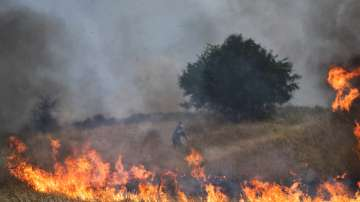 МВнР: Няма информация за пострадали или засегнати българи от пожарите в Гърция