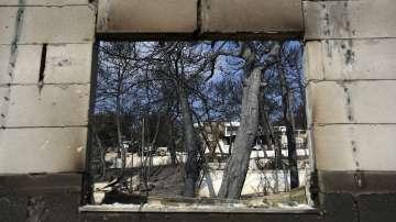Журналист от гръцката обществена телевизия за трагедията след огнения ад