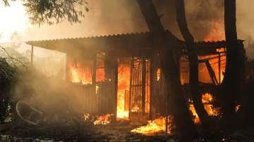 Огнена стихия в Гърция: Над 50 са жертвите на пожарите в южната ни съседка