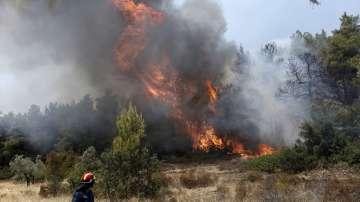 Пожарът на остров Закинтос е изгорил над 700 хектара земя